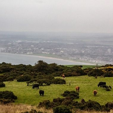 This photo was taken at the top of the Carrick hills over looking Ayr in Scotland.
