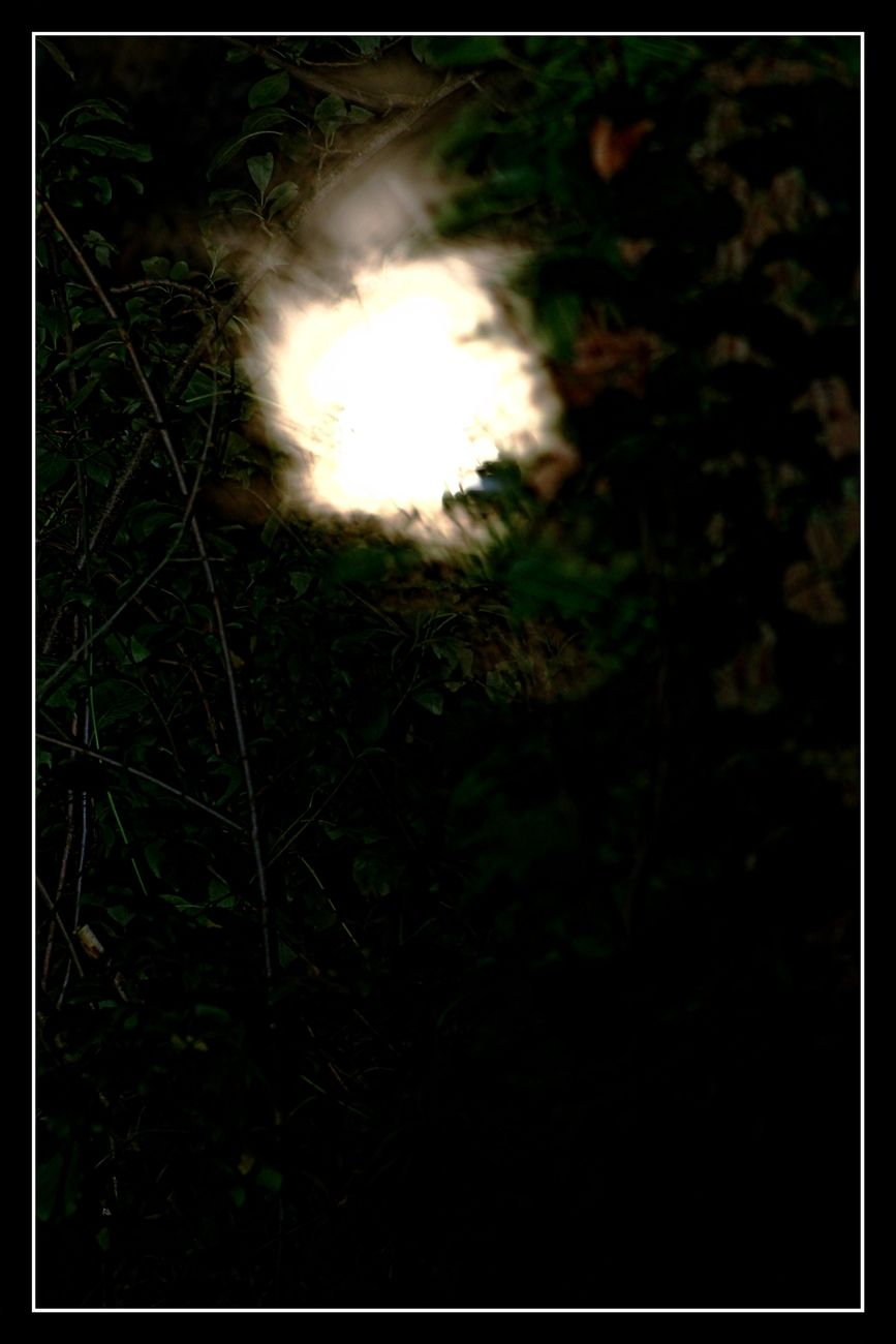 Full moon in Tienen 01/10/2020 The moon may not be that clear. But I thought it was beautiful. Sincerely Theo-Herbots-Photography https://groetenuittienen.blog/