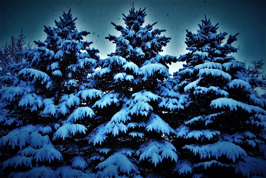 Snowfall on Our Sentinels