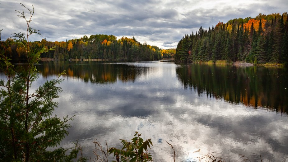 A shot from Regional Road 65 looking south on Centennial Lake, Ontario.