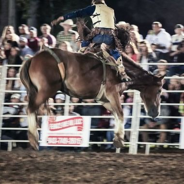 Moncks Corner Pro Rodeo . This event happens 1 time a year. I really love going to it to photograph this young men and women.