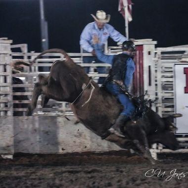 Moncks Corner Pro Rodeo
