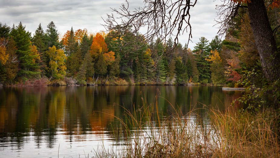 Renfrew County, Ontario, Canada. You don't have to go far just open your shutter.