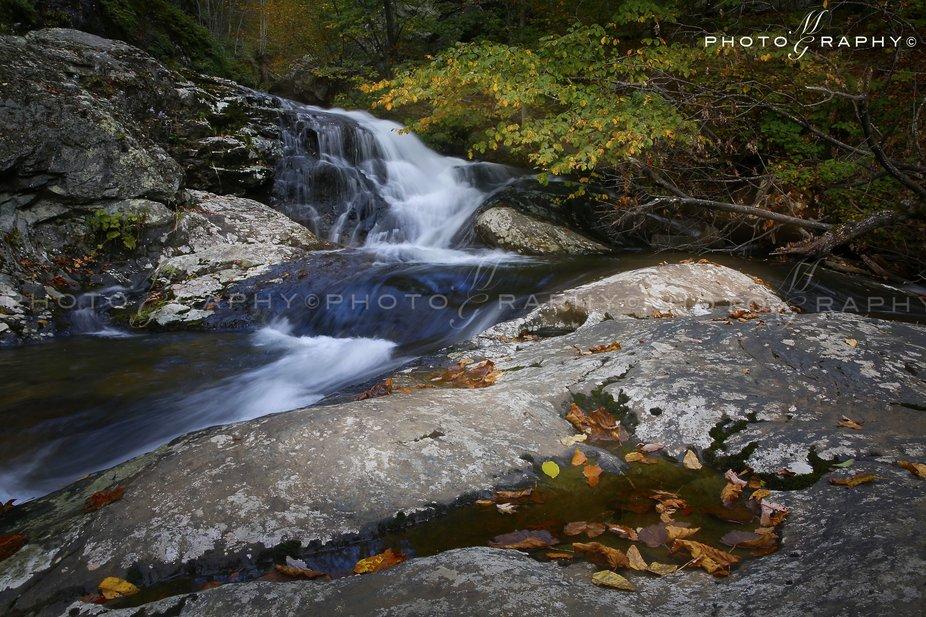 Whiteoak Canyon, Virginia