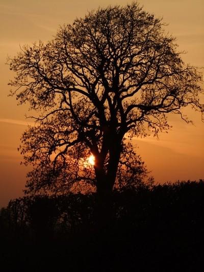 Sunset over the Weld Moor