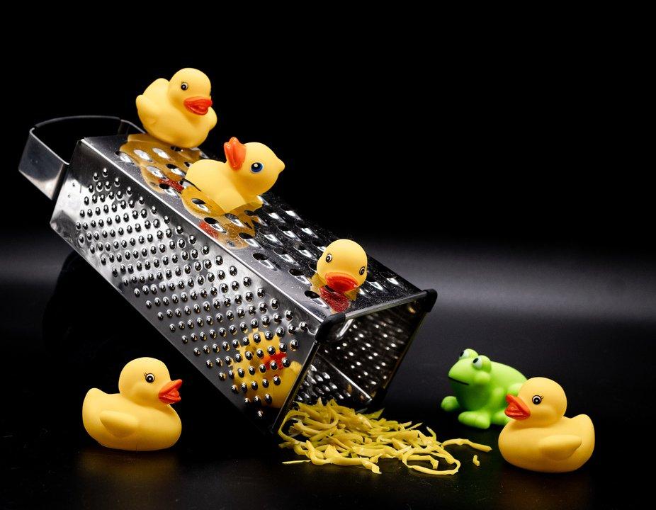 That terrible day when the Duck family mistook the shredder for a slide