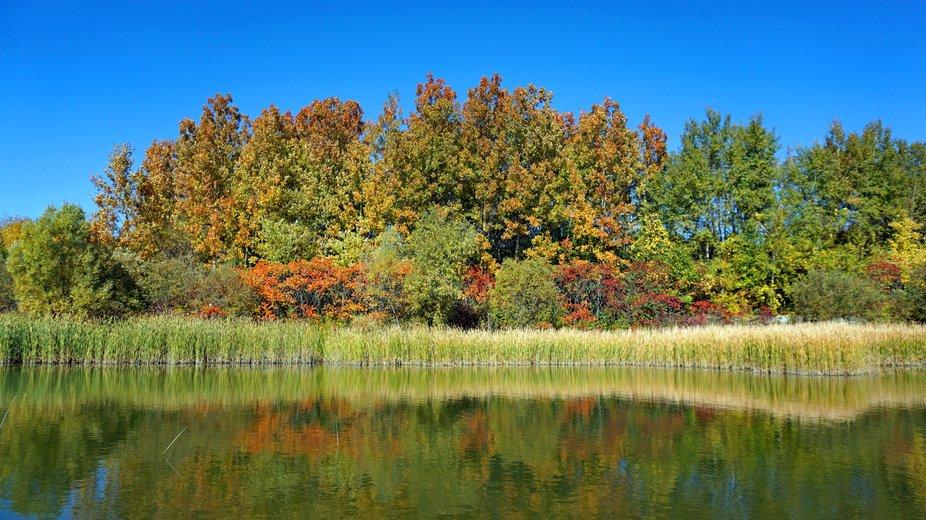 Beauty of Fall.JPG