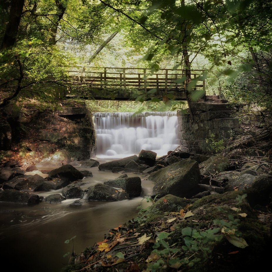 Waterfall on small stream in woodland setting