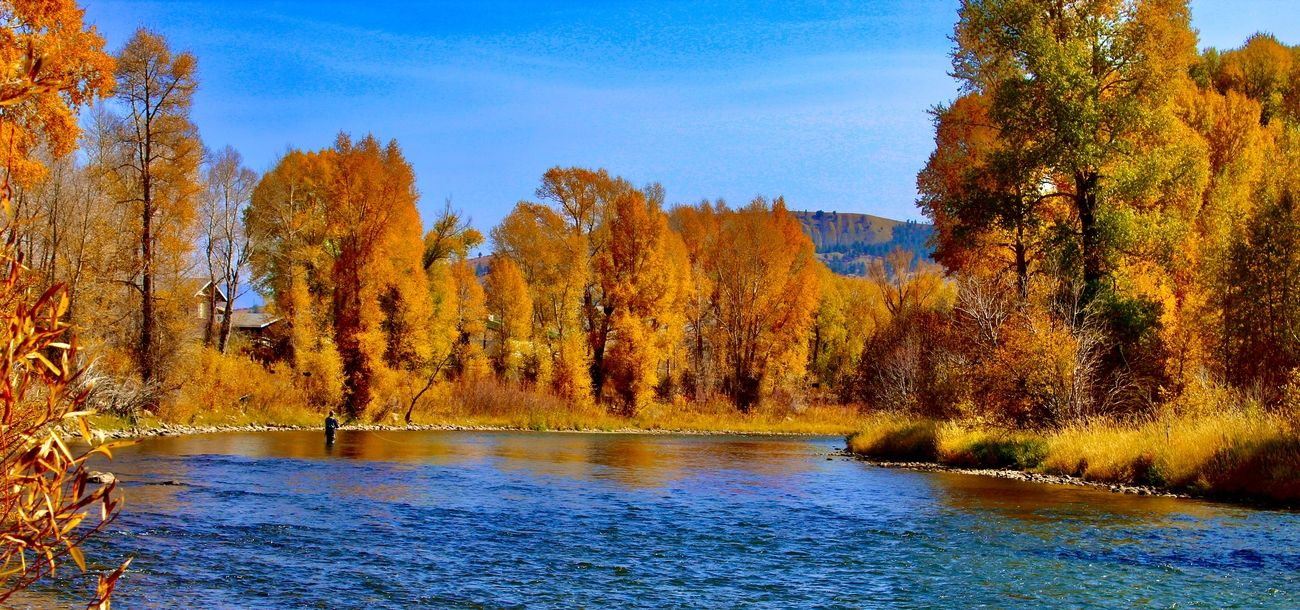 Fall on the Colorado River