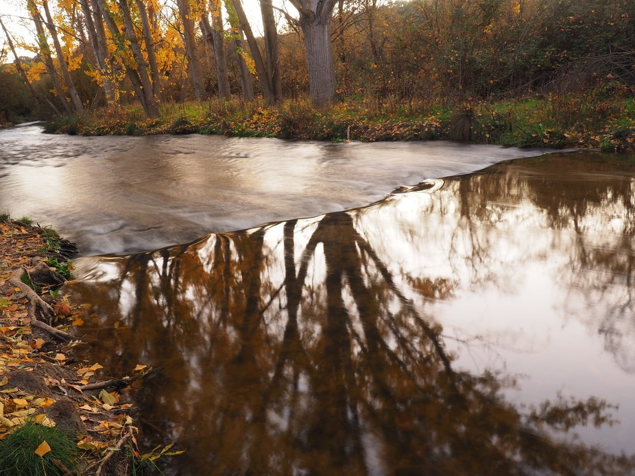 I am fascinated by reflections, always on the edge of reality.