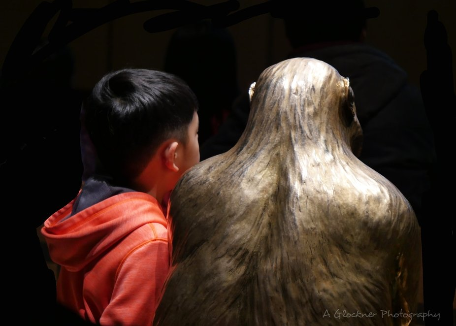 I observed this sweet scene in one of the threatres of The Smithsonian Museum, Washington DC. The...