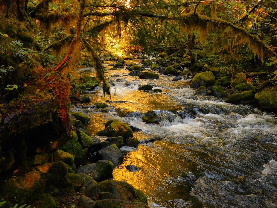 Falls Creek at sunset