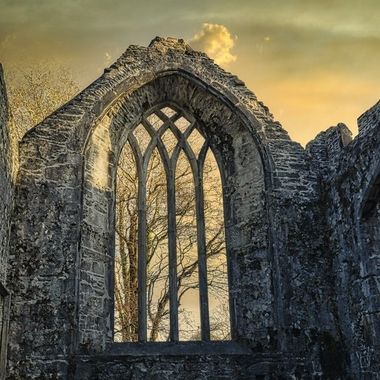 Muckross Abbey- Ireland