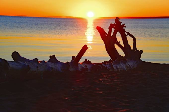 Shot at Point Park Beach, Duluth, Mn. admiring the driftwood as the sun rose over Lake Superior