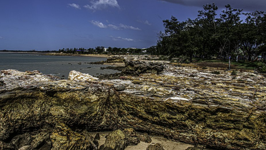 This afternoon I went first to East Point Nature Reserve and then to The Nightcliff Jetty.     I ...