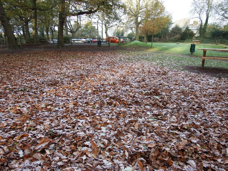 Autumn view of a local car park here in Essex, England