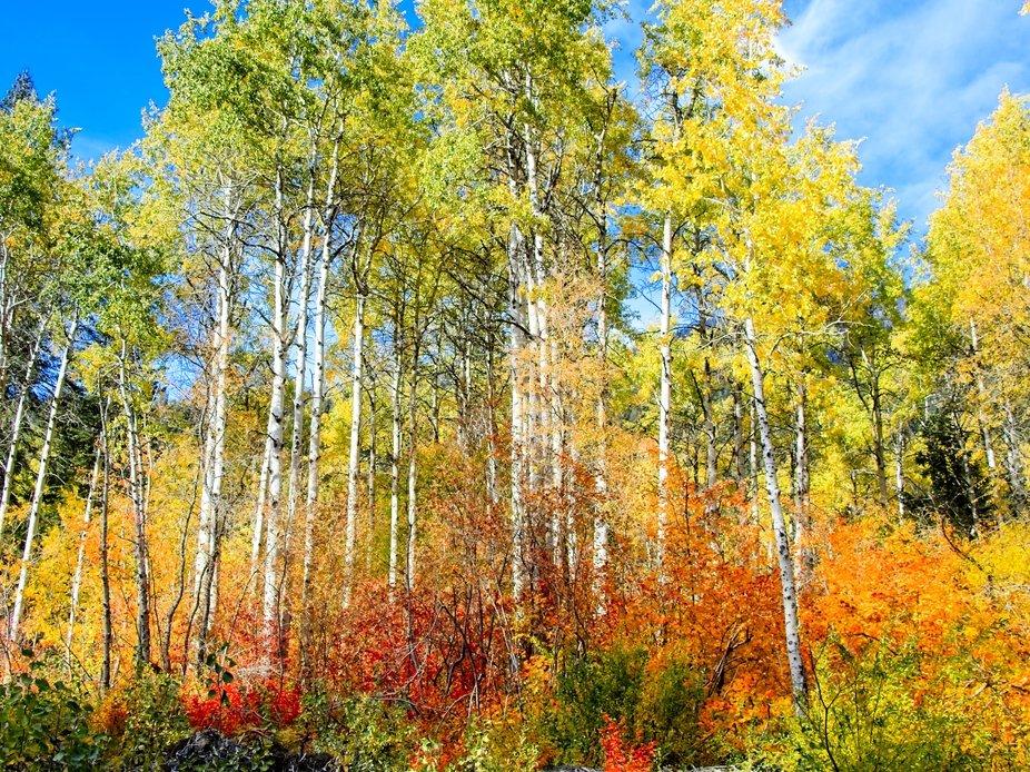 Fall is a beautiful thing in Leavenworth, Washington...