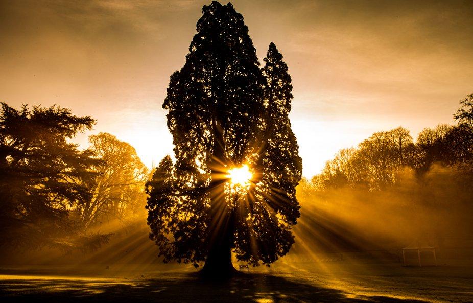 Stunning sunlight at Castle Combe