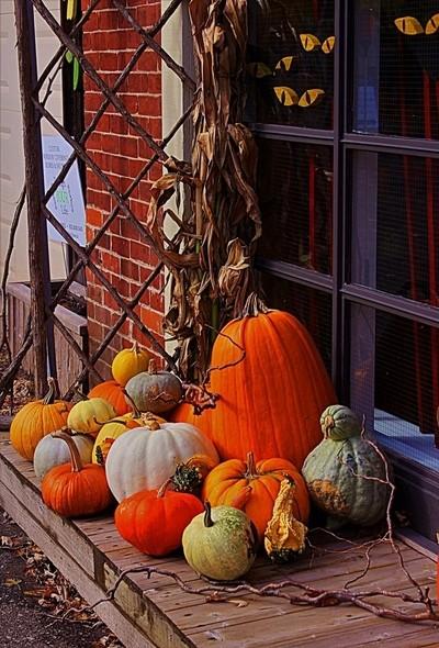 Eyes on the Pumpkins
