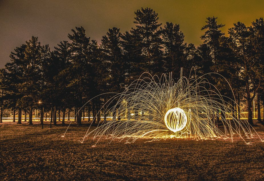 a Ball of steel wool in a park close to trees