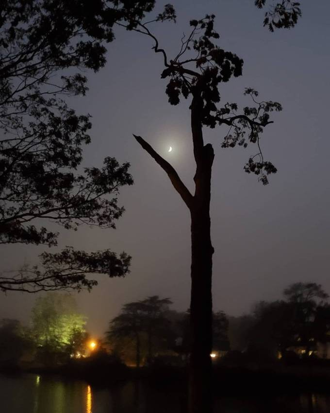 crescent moon dancing in the fog