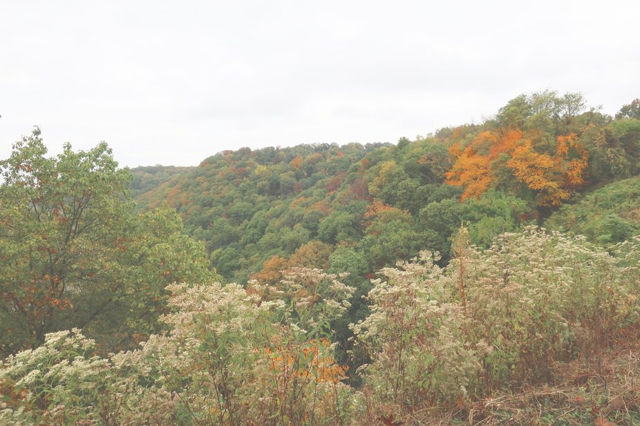 Autumn colors are beginning to show.  1020