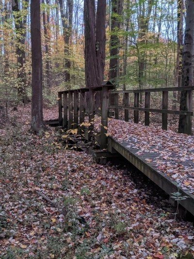 Fall at the nature center