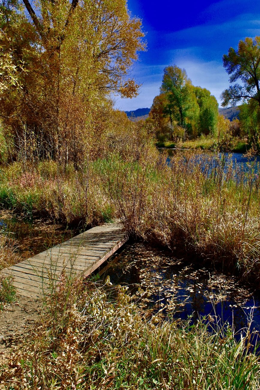 Colorado River near Parshall Colorado