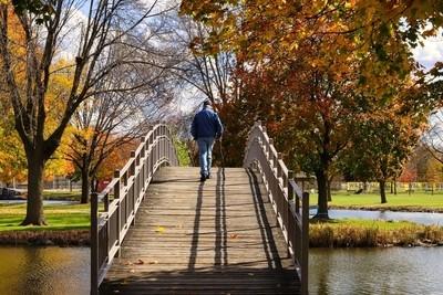 An Autumns Stroll