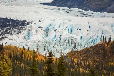 Matanuska Glacier and Fall Colors