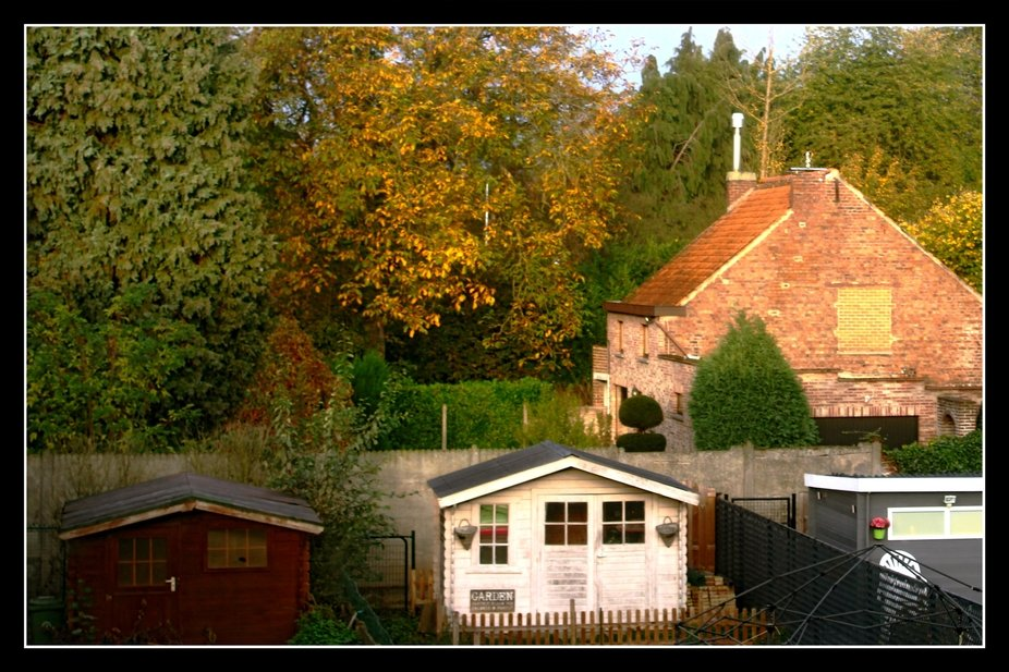 Autumn in Tienen (Belgium) 27/10/2020  It is wonderful how the colors in Nature change daily at t...