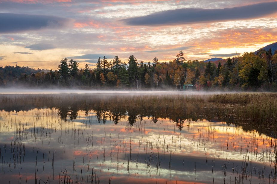 Sunrise reflections on a pond in the Adirondacks.
