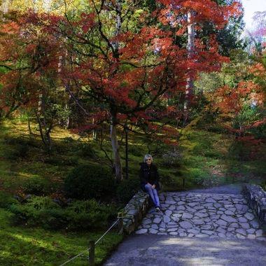 Seattle Japanese Garden, I really enjoyed visiting this park.