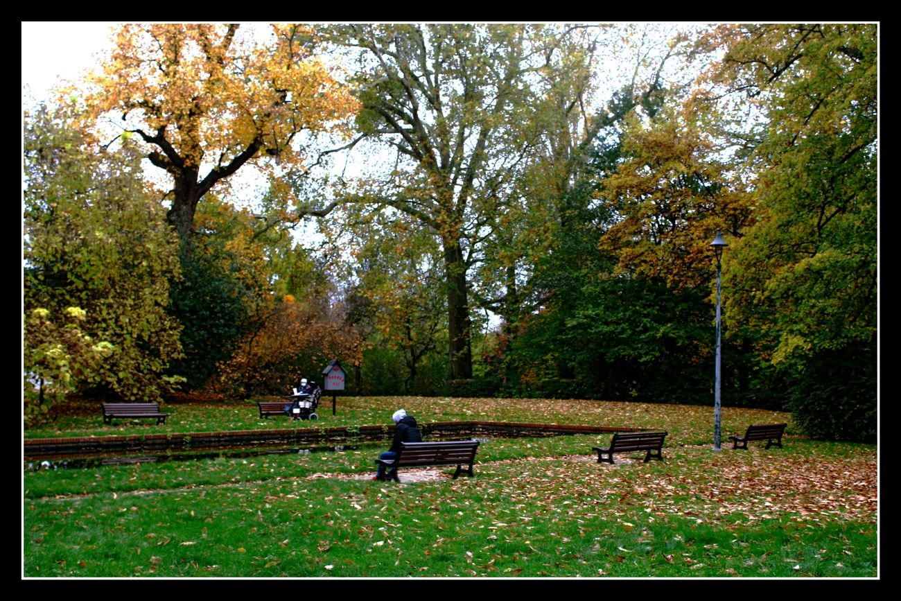 Autumn City Park Tienen (Belgium)