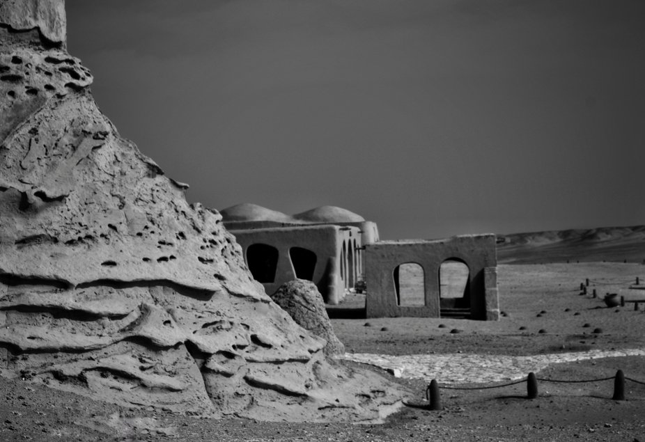 At El fayoum... An amazing place.. Nature.,desert and skeletons of giant whales.. All of this you...