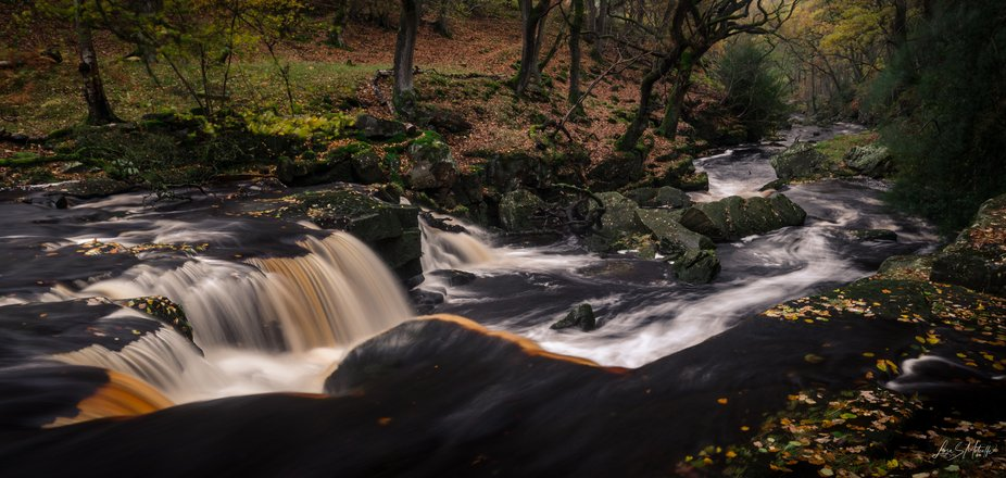 Looking from the top of the falls down West Beck  and the wood beyond.