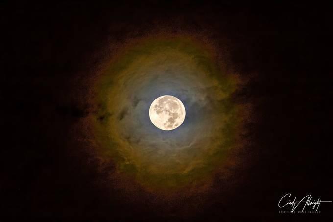 Halloween 2020.  Full Blue Moon