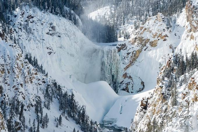 Having the opportunity to see Yellowstone National Park in the winter is something I will never forget.