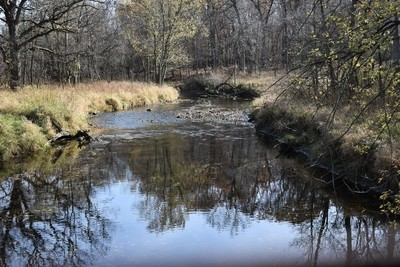 Hickory Creek forest preserve IL