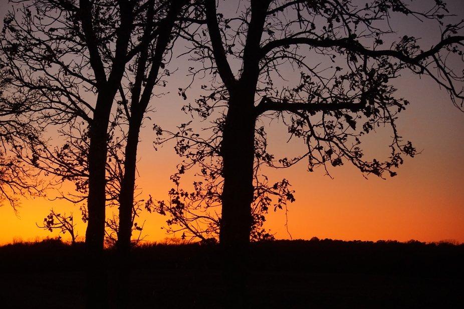 Orange Sky at Night!