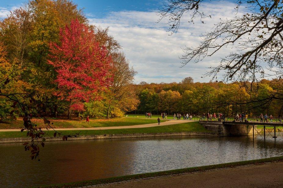 Park Tervuren autumn walk