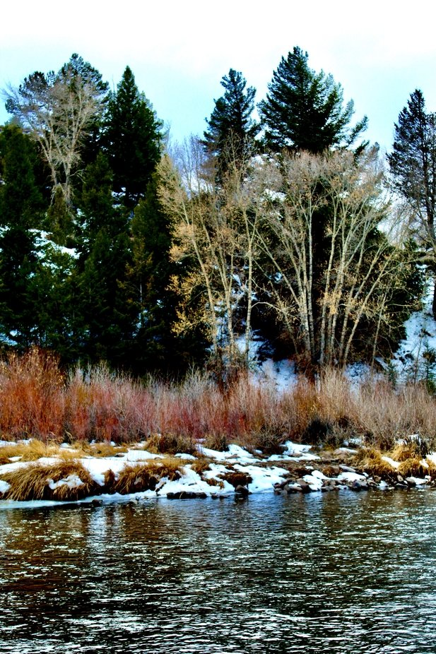 The Colorado River near Byers Canyon in Parshall, Colorado 11/2020