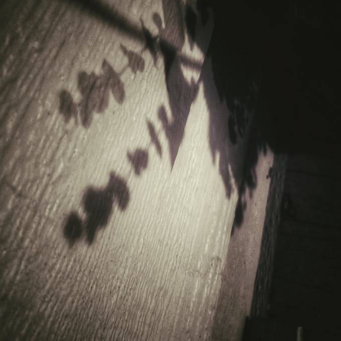 #shadows #nightphotography