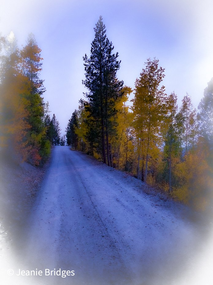 Country road in the Arapaho National Forest in Colorado near Tabernash