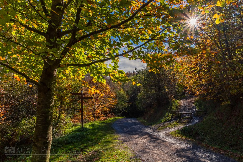 Autumn in natural park of Urkiola