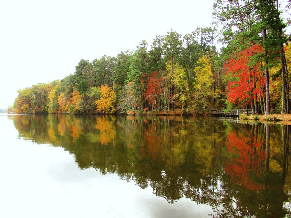 Fall colored trees reflect on the lake's surface.