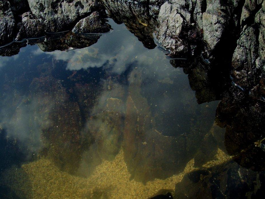 Rock Pool Cornwall 2010.JPG