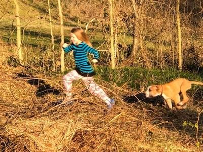 Running of the dog