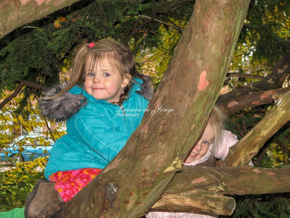 My granddaughters climbing in trees and posing for granddad. How lovely