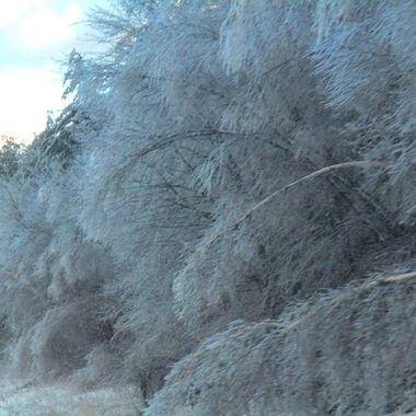 Frosty Winter copy
